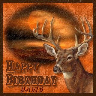 Happy Birthday Cake With Wildlife
